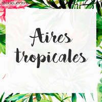 Aires tropicales