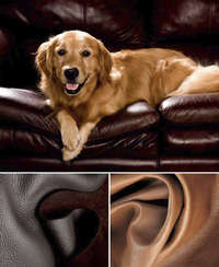 A world of comfort and quality