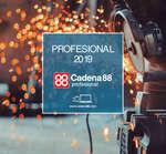 Ofertas de Cadena 88, Profesional 2019