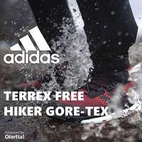 Terrex Free Hiker Gore-Tex