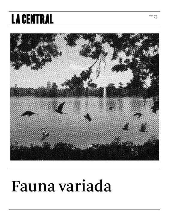Ofertas de La Central, Fauna Variada