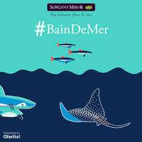 #BainDeMer