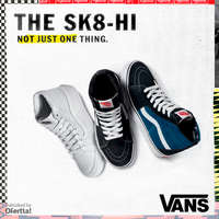 The SK8-HI. Not just one thing